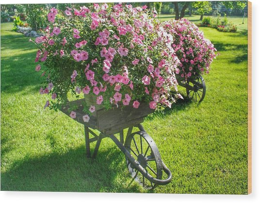 2004 - Wheel Barrow Full Of Flowers Wood Print