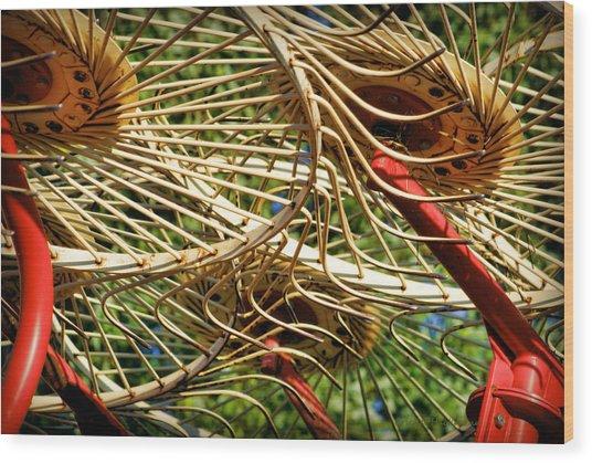 Wheel Rake Abstract Wood Print
