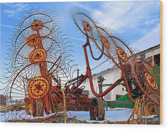 Wheel Rake Upside Down 2 Wood Print
