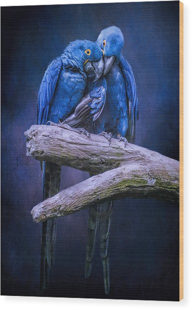 When I'm Feeling Blue Wood Print