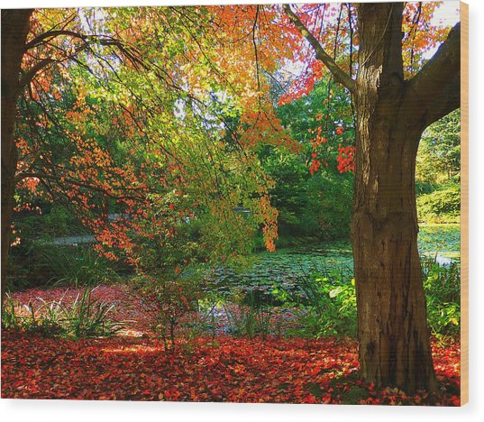 Where Autumn Lingers  Wood Print