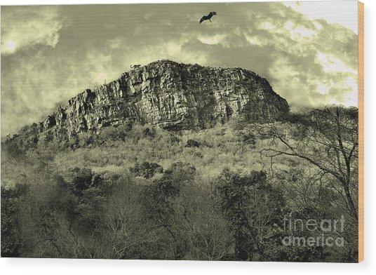Where Eagle Dare-ii Wood Print