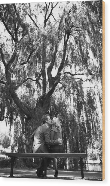 Whisper Willow Wood Print by Andrew Kubica