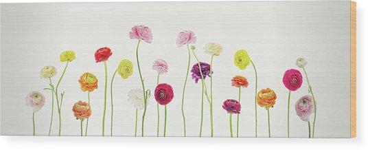 Whispering Spring Wood Print