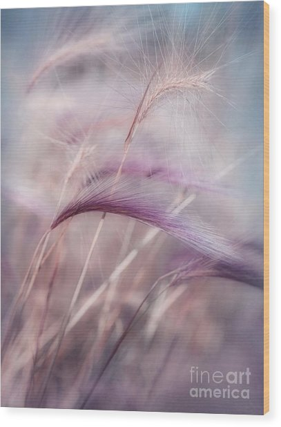 Whispers In The Wind Wood Print