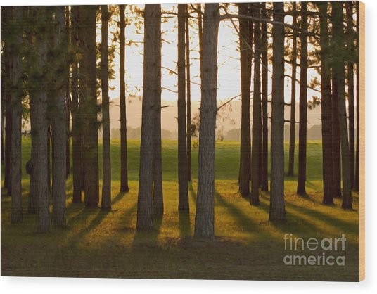Whispers Of The Trees Wood Print