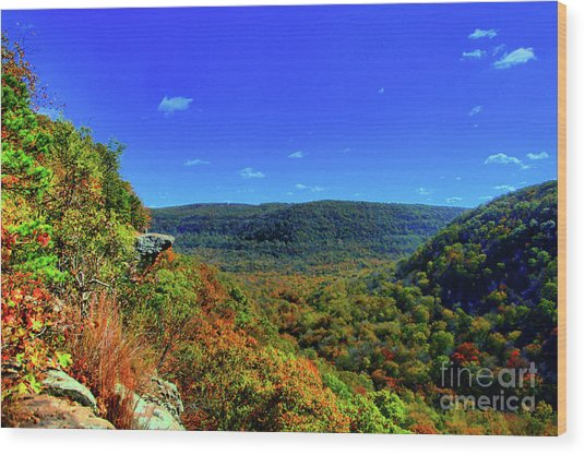 Whitaker Point Wood Print by Kevin Kuchler