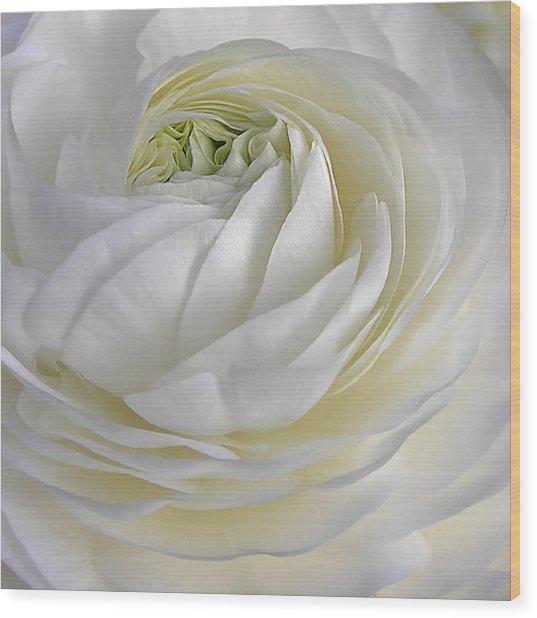 White As Snow Wood Print