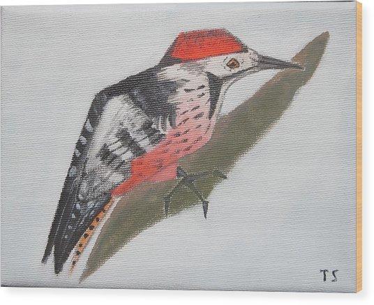 White-backed Woodpecker Wood Print