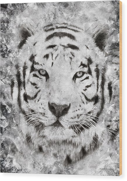 White Bengal Tiger Portrait Wood Print