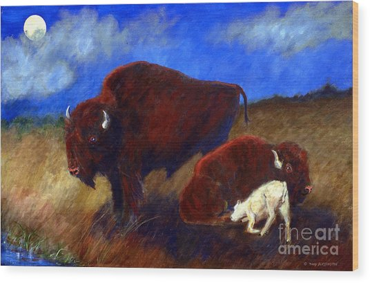 White Buffalo Calf Wood Print