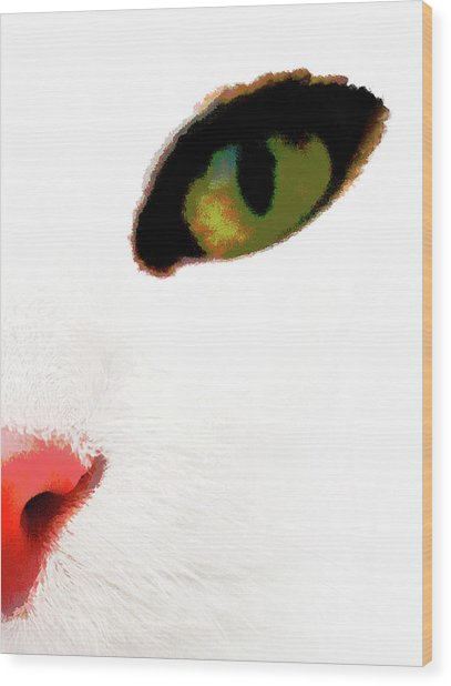 Wood Print featuring the photograph White Cats Face by Menega Sabidussi