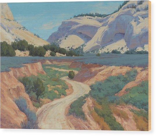 White Cliffs Of Johnson Canyon 18x24 Wood Print