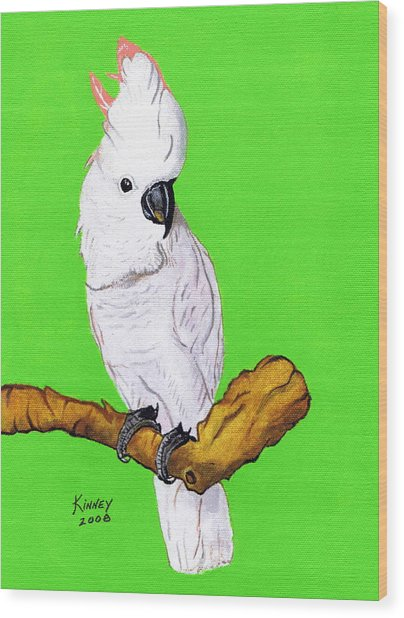 White Cockatoo Wood Print by Jay Kinney