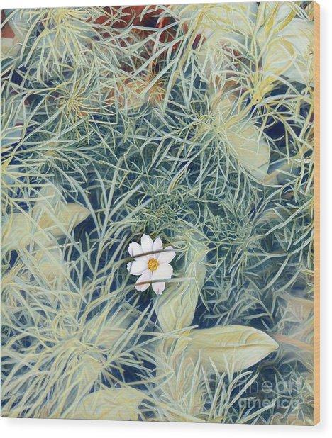 White Cosmo Wood Print