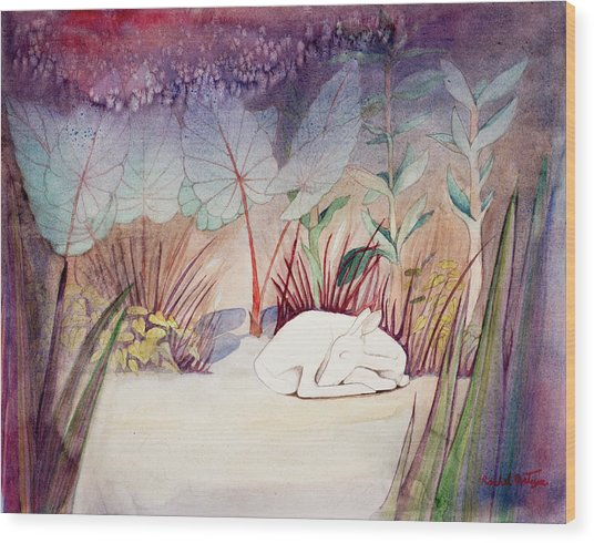 White Doe Dreaming Wood Print