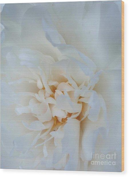 White Dream Wood Print by Valia Bradshaw