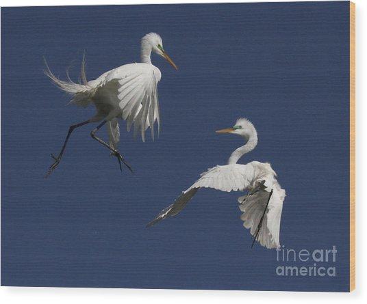 White Egret Ballet Wood Print