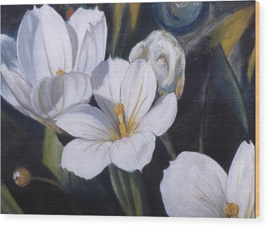 White Flower Study Wood Print by Victoria Heryet