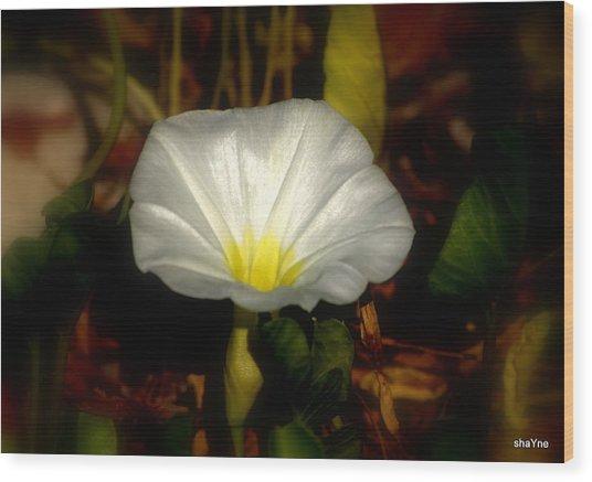 White For Me Wood Print