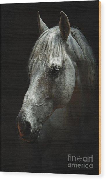 White Horse Portrait Wood Print