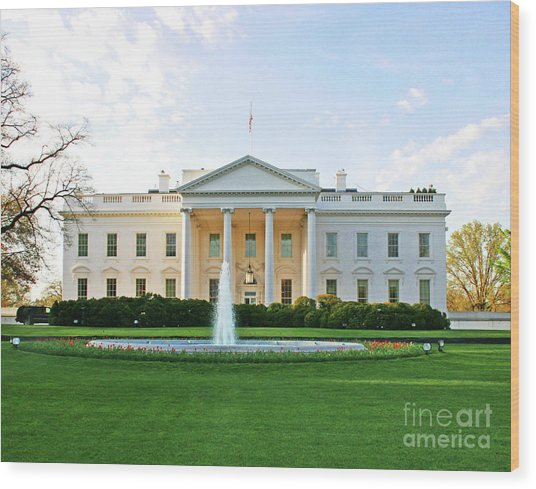 White House Wood Print