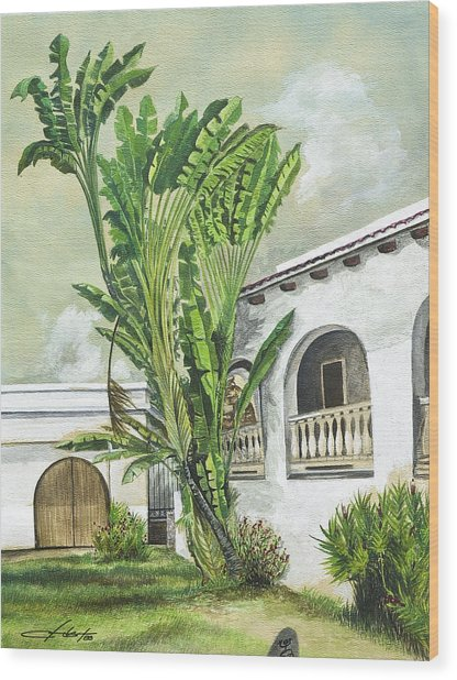White House San Juan Wood Print by George Bloise