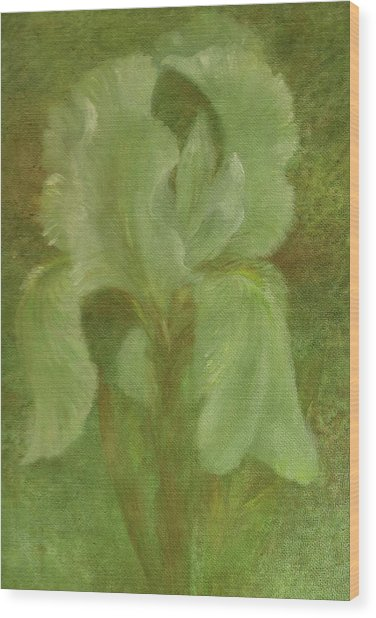 White Iris Painterly Texture Wood Print
