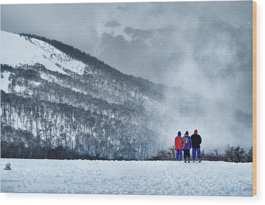 White Landscape In The Frozen Paradise In The Argentine Patagonia Wood Print