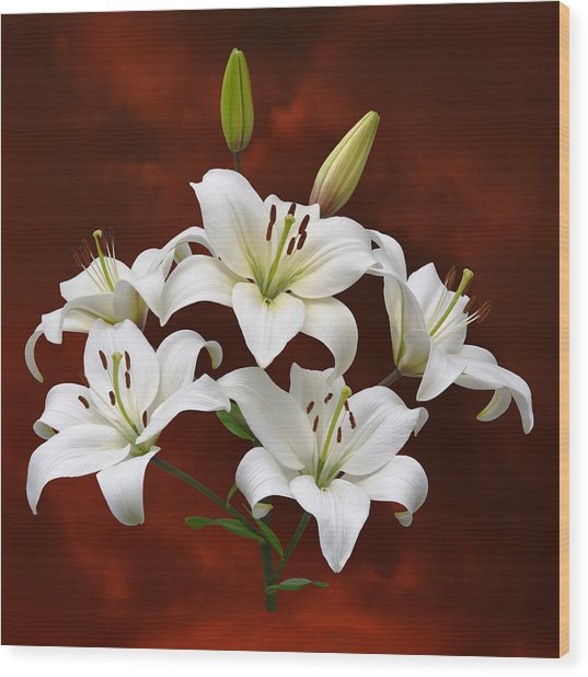 White Lilies On Red Wood Print