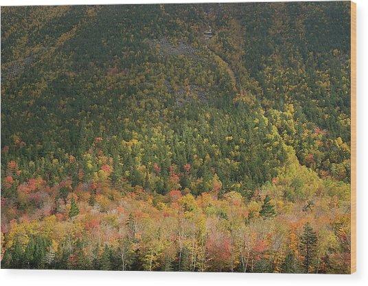 White Mountain Wood Print