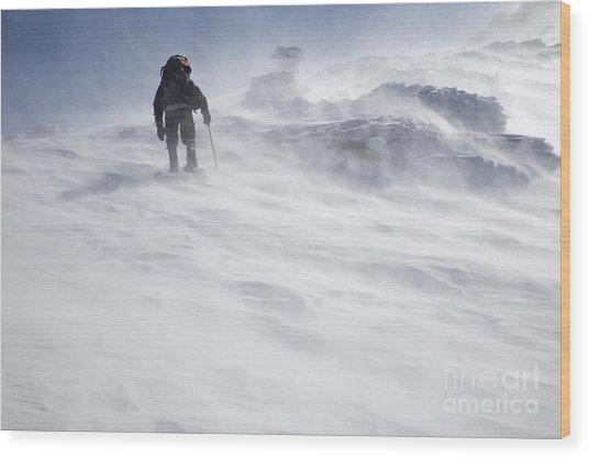 White Mountains New Hampshire - Extreme Weather Wood Print