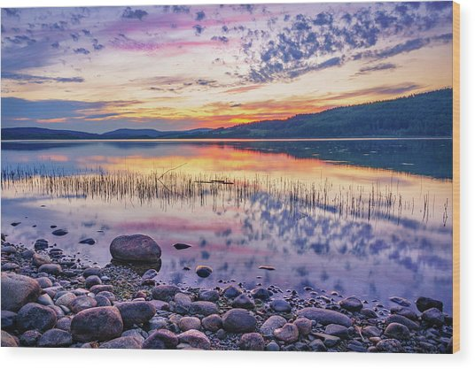 White Night Sunset On A Swedish Lake Wood Print