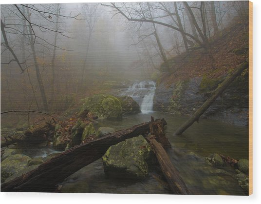 White Oak Canyon Safari Wood Print