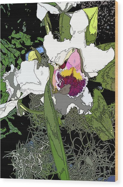White Orchid Wood Print by Adina Campbell