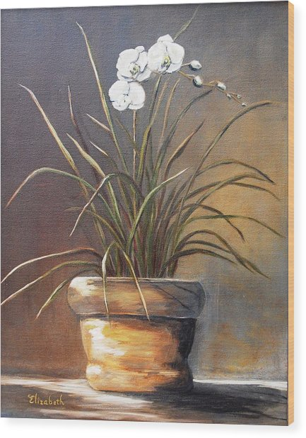White Orchid In Oil Wood Print by Beth Maddox