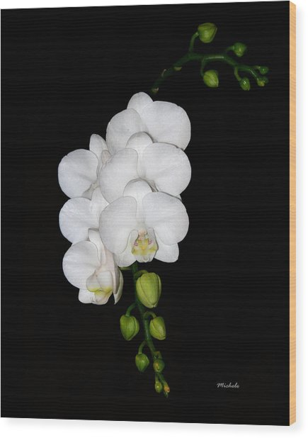 White Orchids On Black Wood Print