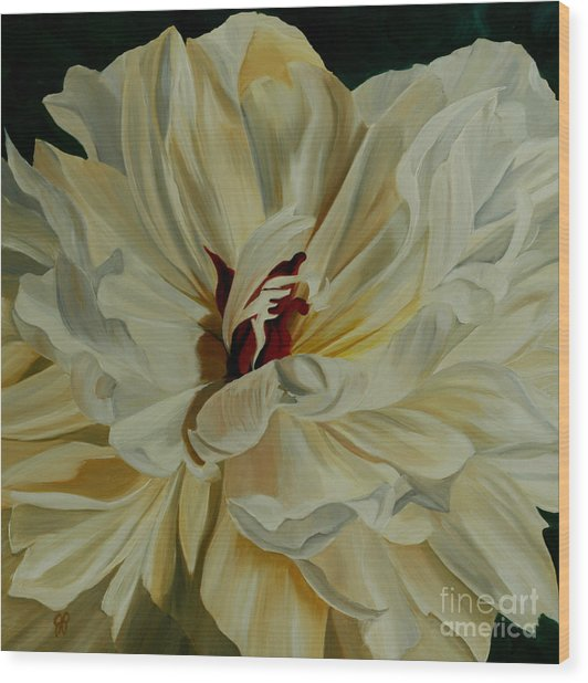 White Peony Wood Print by Julie Pflanzer