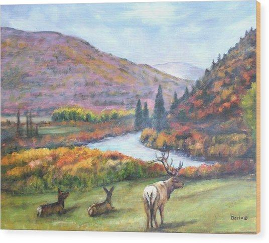 White River Wood Print by Darla Joy  Johnson