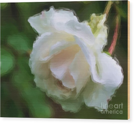 White Rose In Paint Wood Print