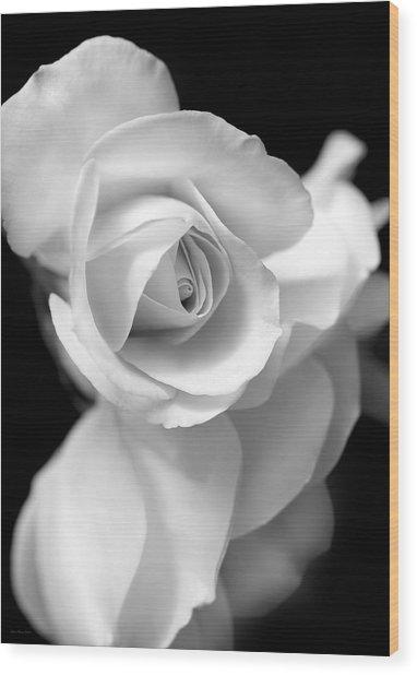 White Rose Petals Black And White Wood Print