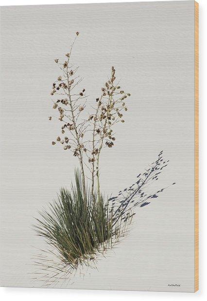White Sands Yucca Wood Print