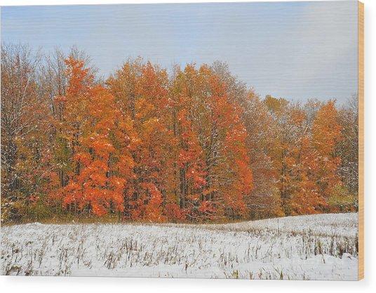 White Snow In Autumn Wood Print