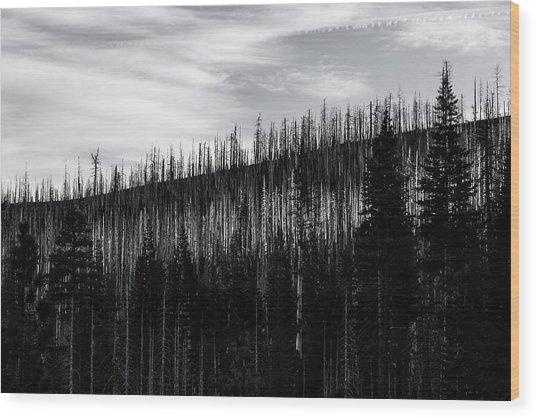 White Stripe Wood Print