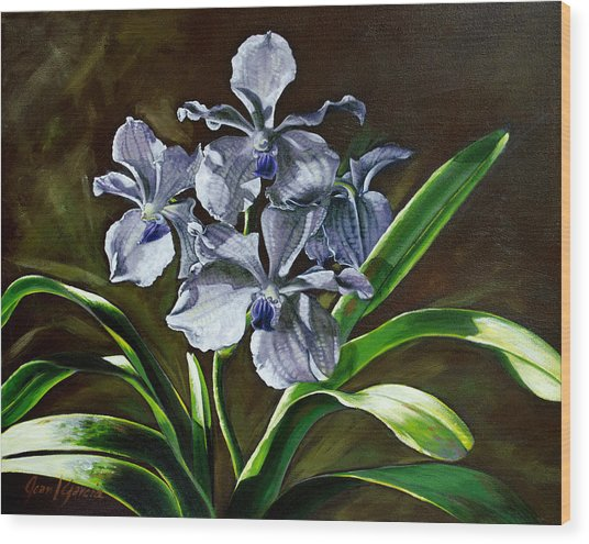 Morning Vanda Wood Print