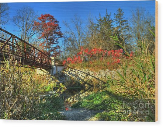 White Water State Park 2 Wood Print