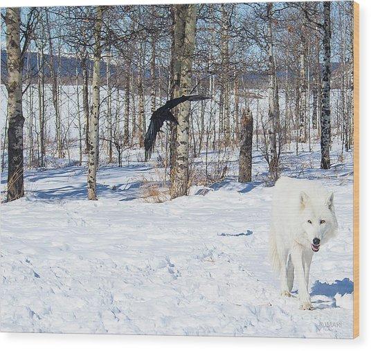 White Wolfdog Wood Print