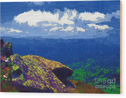 Whiteface Mountain View Wood Print by Diane E Berry