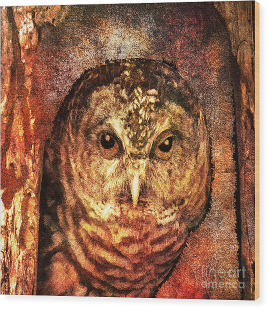 Who Whoo Yoo 2015 Wood Print
