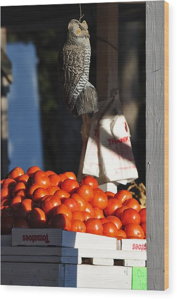 Who's Tomatoes Wood Print by Jan Amiss Photography